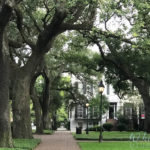 Inspiration and Beauty in Savannah, GA